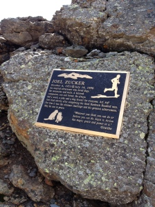 It's cool finding plaques at the top of peaks.